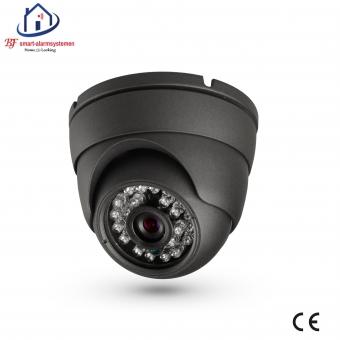 Home-Locking ip-camera dome binnen 1080P  2.0MP (zwart) C-503