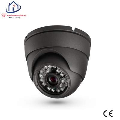 Home-Locking ip-camera dome binnen 1080P  2.0MP (zwart) C-503