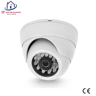 Home-Locking ip-camera dome binnen 1080P met bewegingsdetectie 2.0MP (wit) C-504